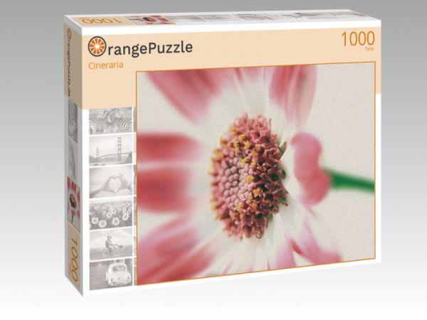 """Puzzle Motiv """"Cineraria"""" - Puzzle-Schachtel zu 1000 Teile Puzzle"""