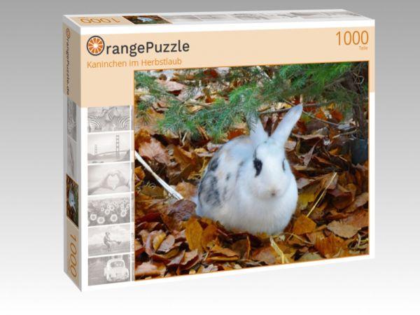 """Puzzle Motiv """"Kaninchen im Herbstlaub"""" - Puzzle-Schachtel zu 1000 Teile Puzzle"""