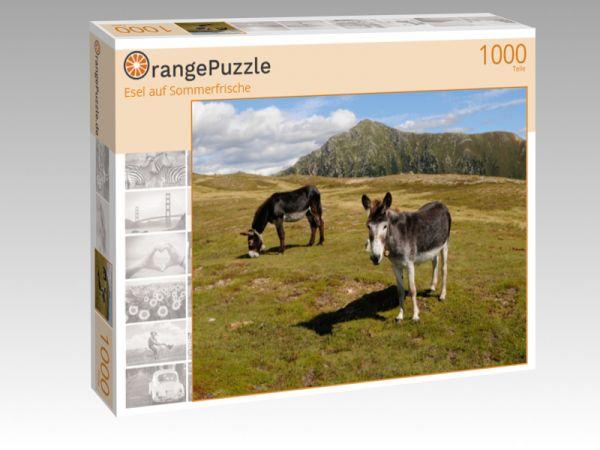 """Puzzle Motiv """"Esel auf Sommerfrische"""" - Puzzle-Schachtel zu 1000 Teile Puzzle"""