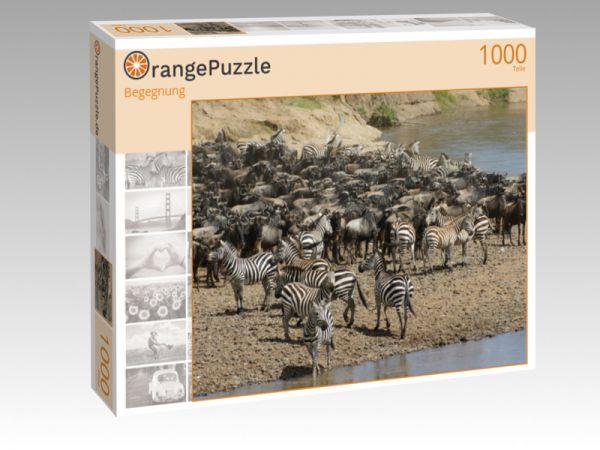 """Puzzle Motiv """"Begegnung"""" - Puzzle-Schachtel zu 1000 Teile Puzzle"""