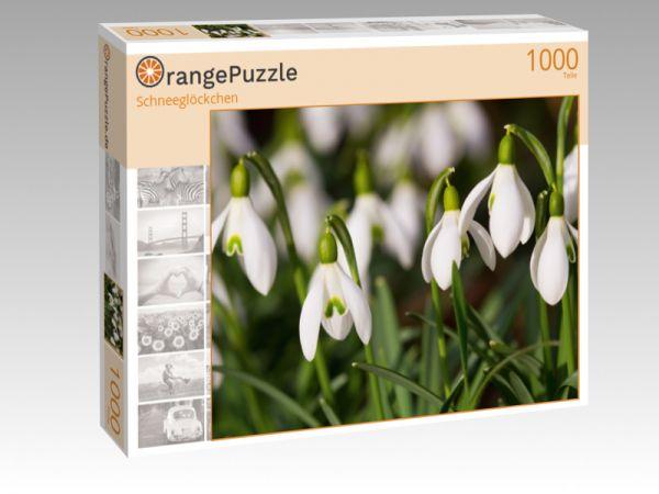 """Puzzle Motiv """"Schneeglöckchen"""" - Puzzle-Schachtel zu 1000 Teile Puzzle"""