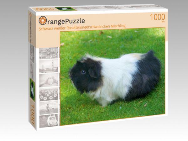 """Puzzle Motiv """"Schwarz weißer Rosettenmeerschweinchen Mischling"""" - Puzzle-Schachtel zu 1000 Teile Puzzle"""