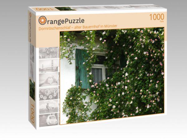 """Puzzle Motiv """"Dornröschenschlaf – alter Bauernhof in Münster"""" - Puzzle-Schachtel zu 1000 Teile Puzzle"""
