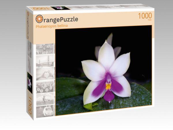 "Puzzle Motiv ""Phalaenopsis bellina"" - Puzzle-Schachtel zu 1000 Teile Puzzle"