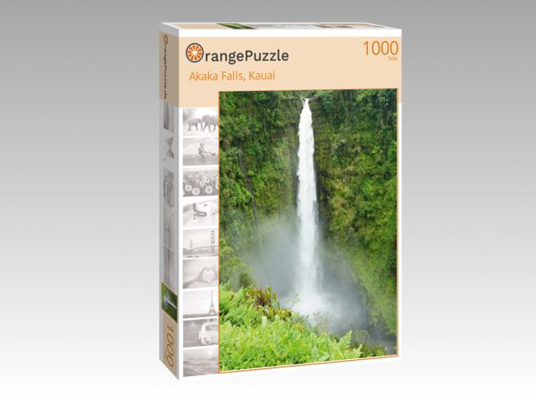 "Puzzle Motiv ""Akaka Falls, Kauai"" - Puzzle-Schachtel zu 1000 Teile Puzzle"
