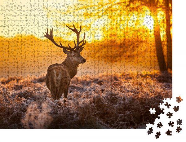 "Puzzle-Motiv ""Rotwild in der Morgensonne"" - Puzzle-Teile zu 1000 Teile Puzzle"