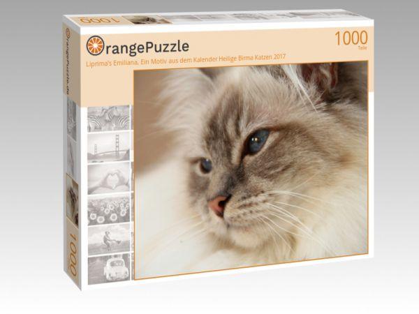 """Puzzle Motiv """"Liprima's Emiliana, Ein Motiv aus dem Kalender Heilige Birma Katzen 2017"""" - Puzzle-Schachtel zu 1000 Teile Puzzle"""