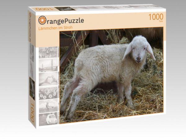 """Puzzle Motiv """"Lämmchen im Stroh"""" - Puzzle-Schachtel zu 1000 Teile Puzzle"""
