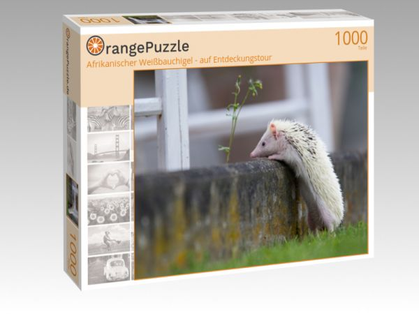 """Puzzle Motiv """"Afrikanischer Weißbauchigel - auf Entdeckungstour"""" - Puzzle-Schachtel zu 1000 Teile Puzzle"""