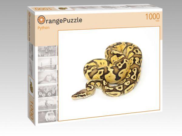 """Puzzle Motiv """"Python"""" - Puzzle-Schachtel zu 1000 Teile Puzzle"""