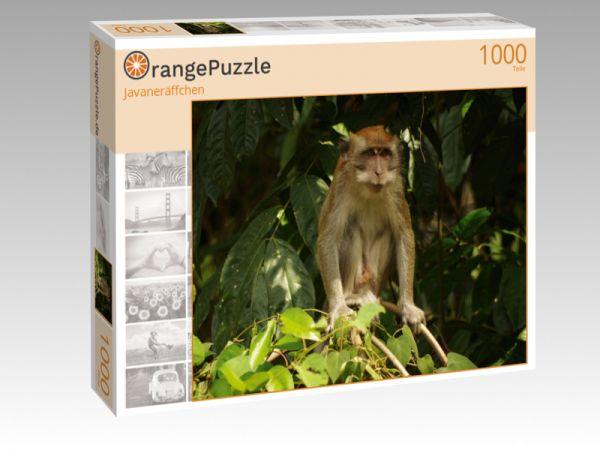 """Puzzle Motiv """"Javaneräffchen"""" - Puzzle-Schachtel zu 1000 Teile Puzzle"""