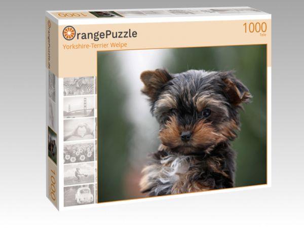 """Puzzle Motiv """"Yorkshire-Terrier Welpe"""" - Puzzle-Schachtel zu 1000 Teile Puzzle"""