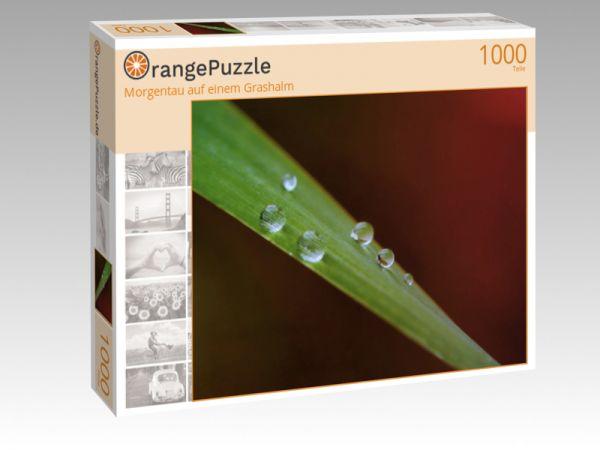 """Puzzle Motiv """"Morgentau auf einem Grashalm"""" - Puzzle-Schachtel zu 1000 Teile Puzzle"""