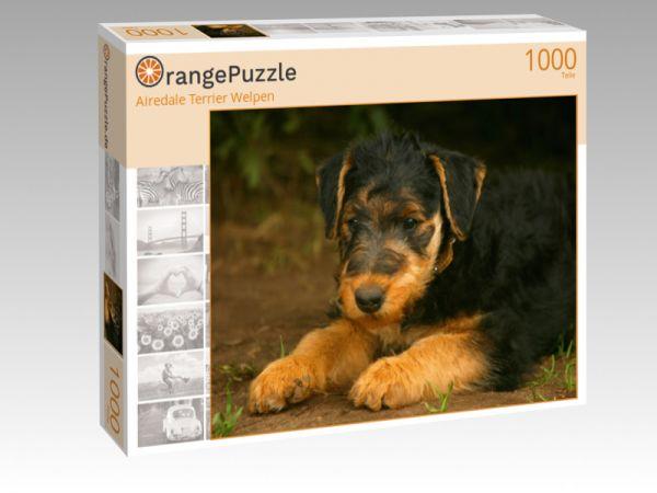"""Puzzle Motiv """"Airedale Terrier Welpen"""" - Puzzle-Schachtel zu 1000 Teile Puzzle"""