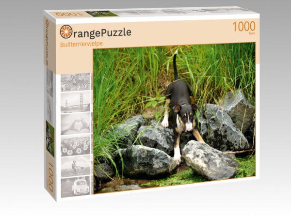 """Puzzle Motiv """"Bullterrierwelpe"""" - Puzzle-Schachtel zu 1000 Teile Puzzle"""