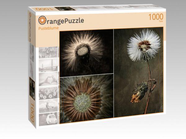 """Puzzle Motiv """"Pusteblume"""" - Puzzle-Schachtel zu 1000 Teile Puzzle"""