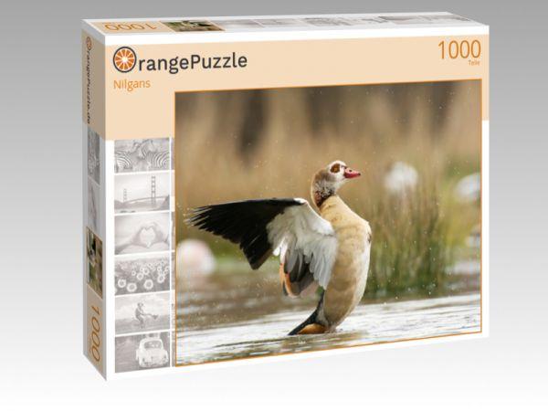 """Puzzle Motiv """"Nilgans"""" - Puzzle-Schachtel zu 1000 Teile Puzzle"""