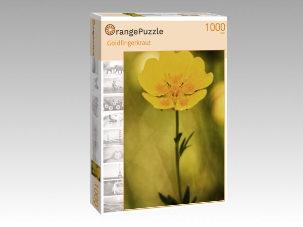 """Puzzle Motiv """"Goldfingerkraut"""" - Puzzle-Schachtel zu 1000 Teile Puzzle"""