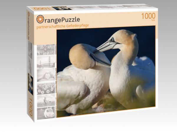 """Puzzle Motiv """"partnerschaftliche Gefiederpflege"""" - Puzzle-Schachtel zu 1000 Teile Puzzle"""