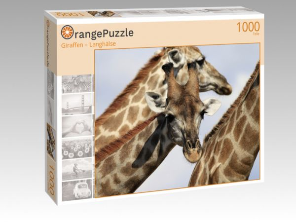 "Puzzle Motiv ""Giraffen – Langhälse"" - Puzzle-Schachtel zu 1000 Teile Puzzle"