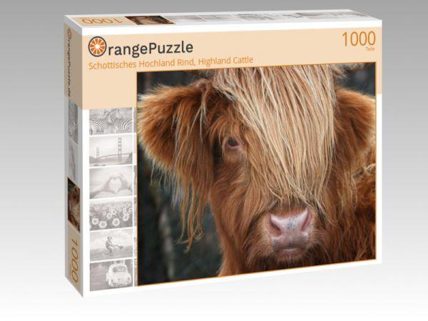 """Puzzle Motiv """"Schottisches Hochland Rind, Highland Cattle"""" - Puzzle-Schachtel zu 1000 Teile Puzzle"""