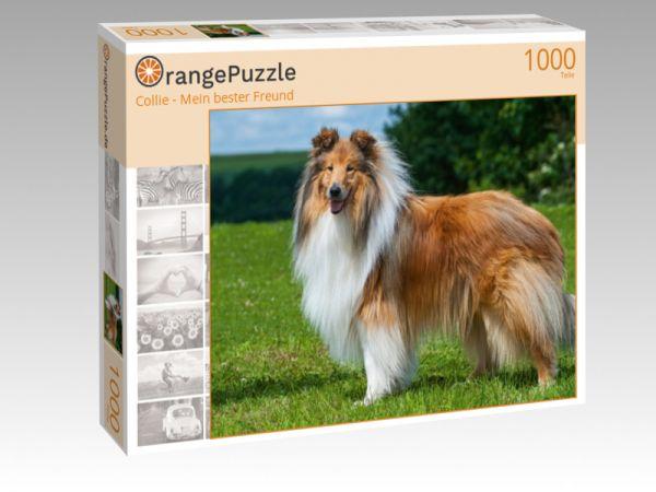 """Puzzle Motiv """"Collie - Mein bester Freund"""" - Puzzle-Schachtel zu 1000 Teile Puzzle"""