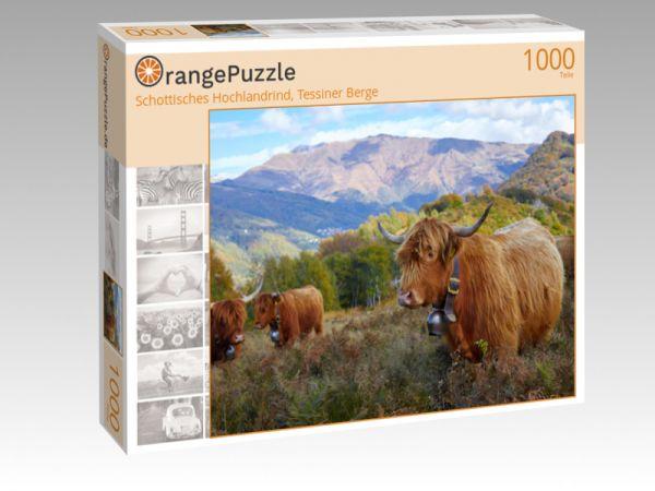 """Puzzle Motiv """"Schottisches Hochlandrind, Tessiner Berge"""" - Puzzle-Schachtel zu 1000 Teile Puzzle"""