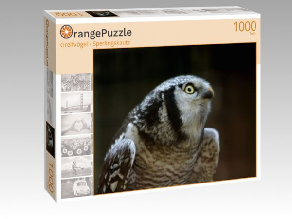 "Puzzle Motiv ""Greifvögel - Sperlingskautz"" - Puzzle-Schachtel zu 1000 Teile Puzzle"