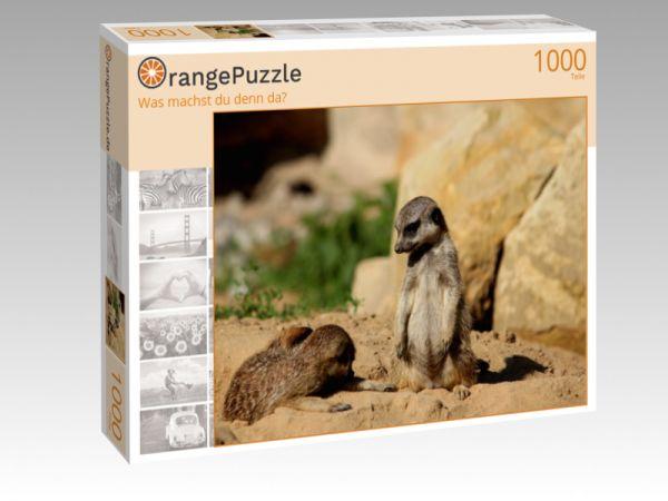 """Puzzle Motiv """"Was machst du denn da?"""" - Puzzle-Schachtel zu 1000 Teile Puzzle"""