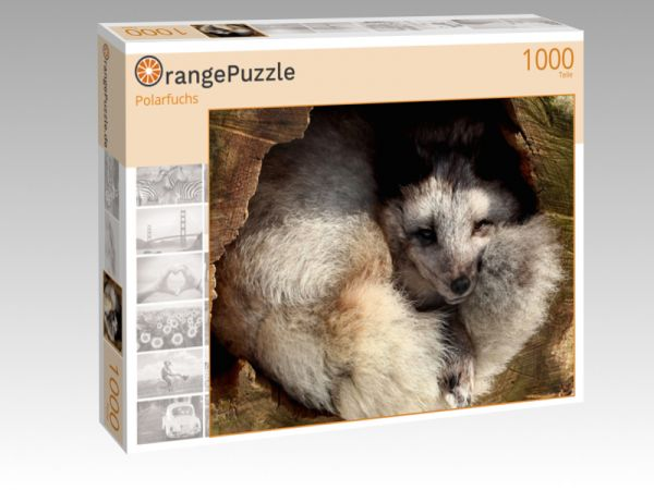 "Puzzle Motiv ""Polarfuchs"" - Puzzle-Schachtel zu 1000 Teile Puzzle"
