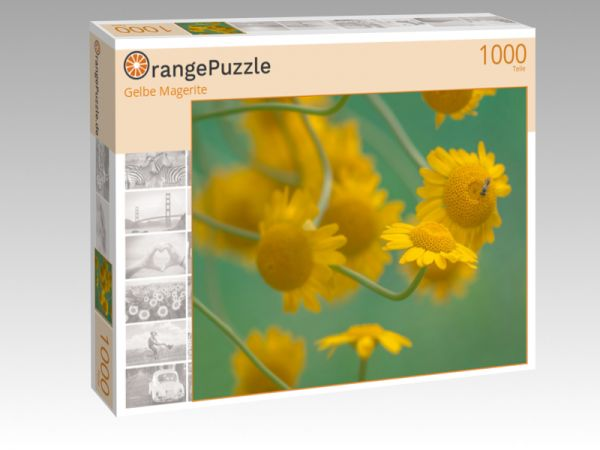 "Puzzle Motiv ""Gelbe Magerite"" - Puzzle-Schachtel zu 1000 Teile Puzzle"