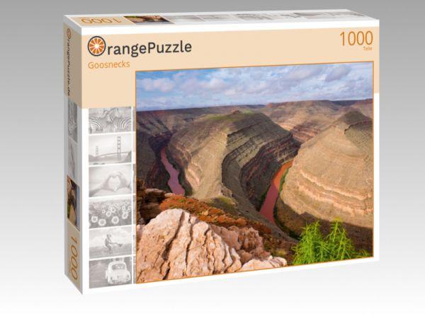 """Puzzle Motiv """"Goosnecks"""" - Puzzle-Schachtel zu 1000 Teile Puzzle"""