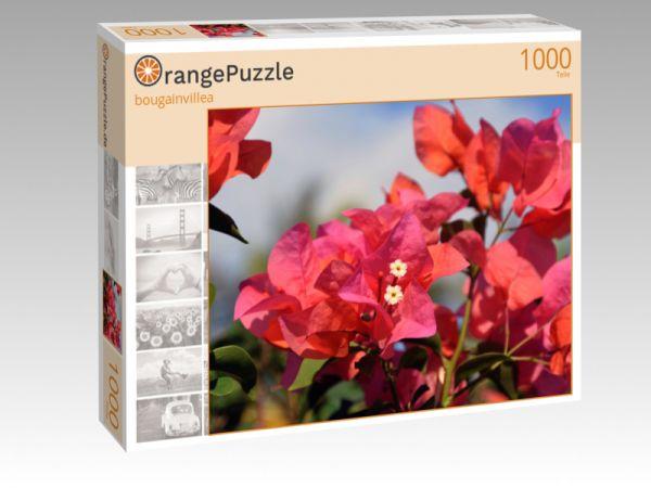 """Puzzle Motiv """"bougainvillea"""" - Puzzle-Schachtel zu 1000 Teile Puzzle"""