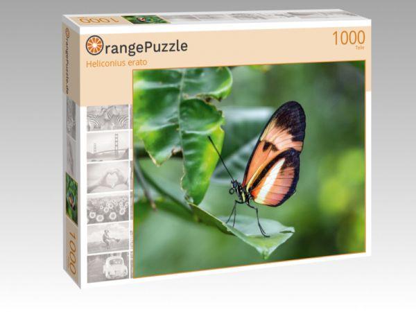 "Puzzle Motiv ""Heliconius erato"" - Puzzle-Schachtel zu 1000 Teile Puzzle"