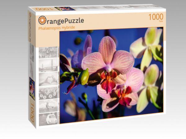 """Puzzle Motiv """"Phalaenopsis Hybride"""" - Puzzle-Schachtel zu 1000 Teile Puzzle"""
