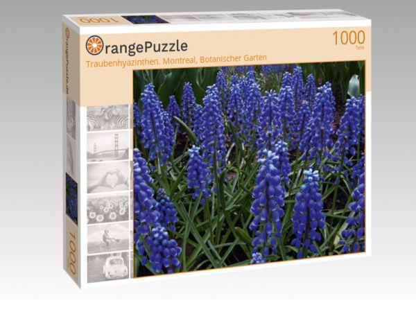 """Puzzle Motiv """"Traubenhyazinthen. Montreal, Botanischer Garten"""" - Puzzle-Schachtel zu 1000 Teile Puzzle"""