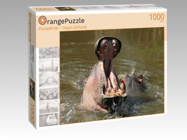 """Puzzle Motiv """"Flusspferde – Hippo-Schlund"""" - Puzzle-Schachtel zu 1000 Teile Puzzle"""