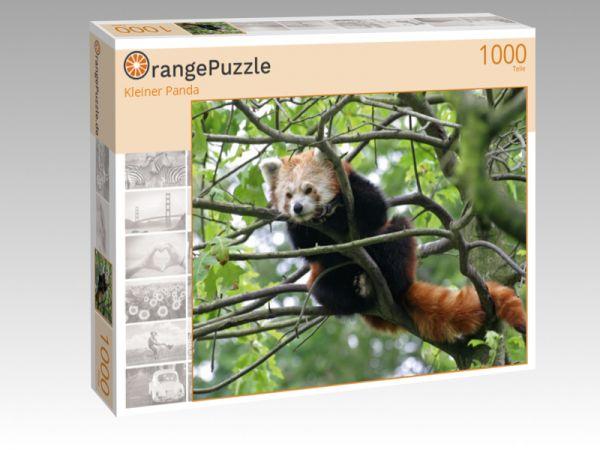 """Puzzle Motiv """"Kleiner Panda"""" - Puzzle-Schachtel zu 1000 Teile Puzzle"""