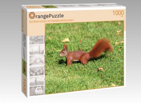 """Puzzle Motiv """"Eichhörnchen im ParkEichhörnchen"""" - Puzzle-Schachtel zu 1000 Teile Puzzle"""