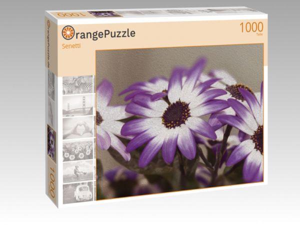 """Puzzle Motiv """"Senetti"""" - Puzzle-Schachtel zu 1000 Teile Puzzle"""