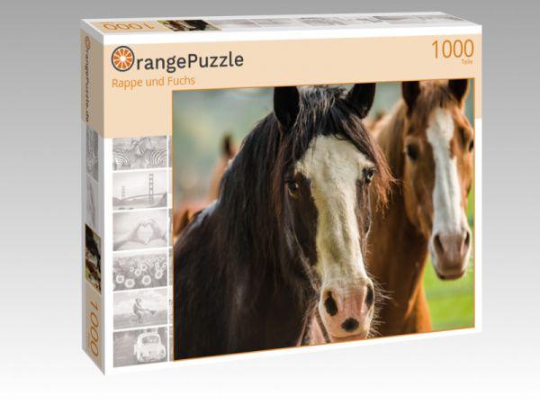 """Puzzle Motiv """"Rappe und Fuchs"""" - Puzzle-Schachtel zu 1000 Teile Puzzle"""