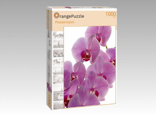 """Puzzle Motiv """"Phalaenopsis"""" - Puzzle-Schachtel zu 1000 Teile Puzzle"""