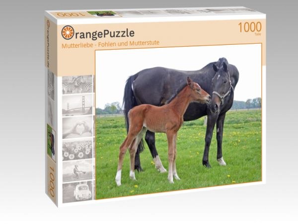 """Puzzle Motiv """"Mutterliebe - Fohlen und Mutterstute"""" - Puzzle-Schachtel zu 1000 Teile Puzzle"""