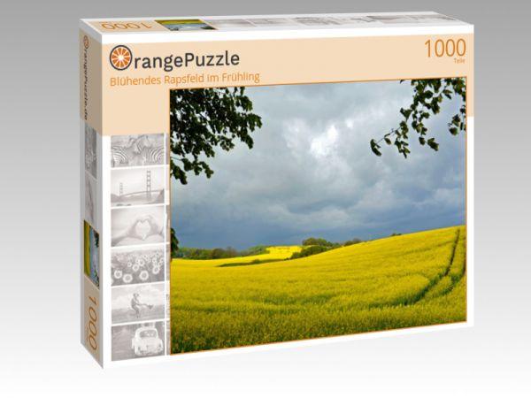 """Puzzle Motiv """"Blühendes Rapsfeld im Frühling"""" - Puzzle-Schachtel zu 1000 Teile Puzzle"""