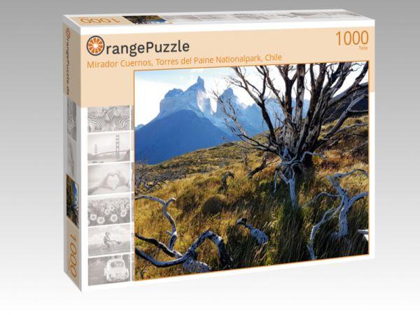 """Puzzle Motiv """"Mirador Cuernos, Torres del Paine Nationalpark, Chile"""" - Puzzle-Schachtel zu 1000 Teile Puzzle"""