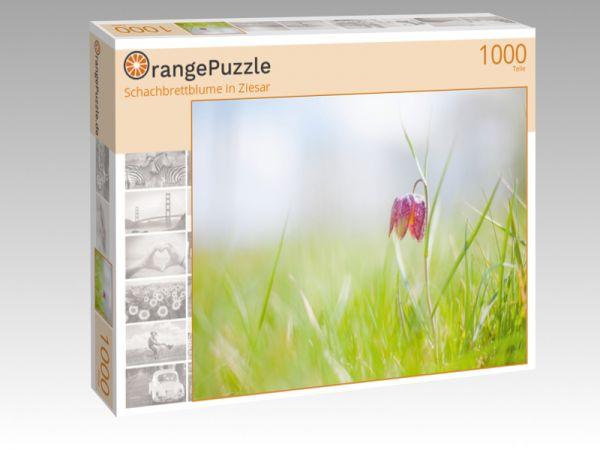 """Puzzle Motiv """"Schachbrettblume in Ziesar"""" - Puzzle-Schachtel zu 1000 Teile Puzzle"""