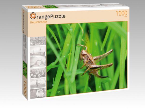 """Puzzle Motiv """"Heuschrecke"""" - Puzzle-Schachtel zu 1000 Teile Puzzle"""