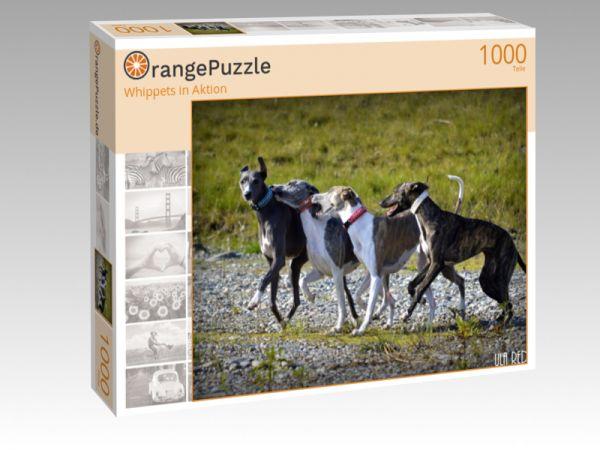"""Puzzle Motiv """"Whippets in Aktion"""" - Puzzle-Schachtel zu 1000 Teile Puzzle"""