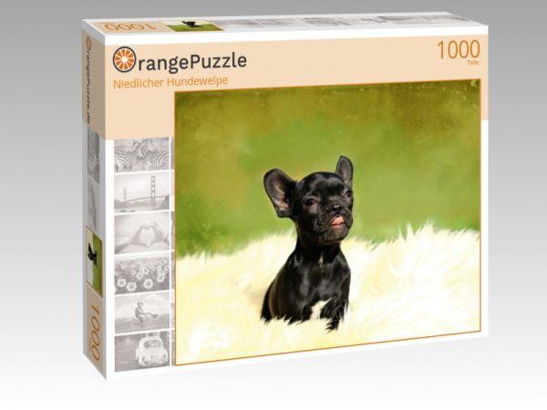 """Puzzle Motiv """"Niedlicher Hundewelpe"""" - Puzzle-Schachtel zu 1000 Teile Puzzle"""