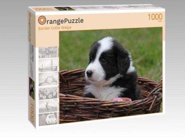 """Puzzle Motiv """"Border Collie Welpe"""" - Puzzle-Schachtel zu 1000 Teile Puzzle"""
